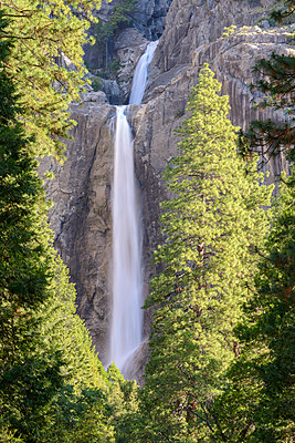 Lower Yosemite Falls in Yosemite Valley, UNESCO World Heritage Site, California, United States of America, North America - p871m1118650 by Adam Burton