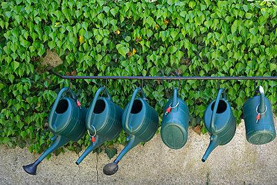 Ready to water - p1657m2284967 by Kornelia Rumberg
