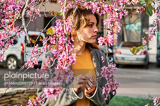 Young girl touching the pink flowers of the tree in spring - p1166m2269729 by Cavan Images