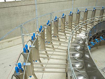 Dairying - p1188m1002888 by Henk Wildschut
