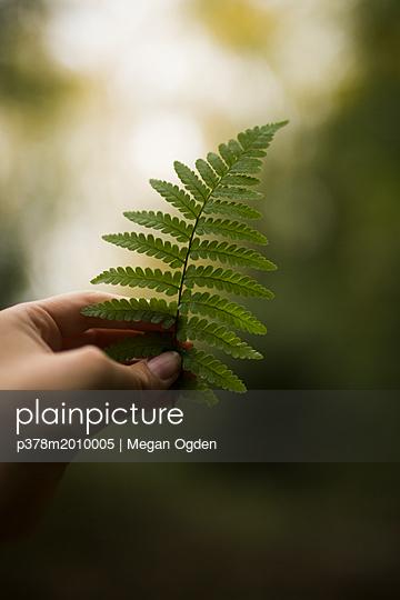 p378m2010005 von Megan Ogden