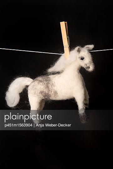 Gefilztes Pferd auf Wäscheleine - p451m1563904 von Anja Weber-Decker