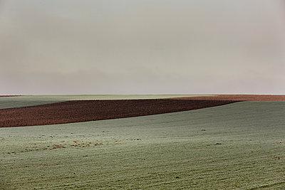 Acker und Feld  - p248m982876 von BY