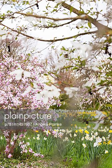 Naturschauspiel - p781m1497607 von Angela Franke