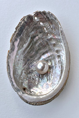 Pearl in a oyster - p1210m2254566 by Ono Ludwig