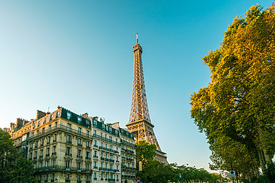 Eifel tower with houses in neoclassic typical style in foreground in Paris - p1332m1502729 by Tamboly