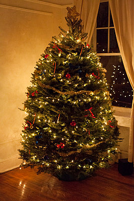 Decorated Christmas Tree - p956m892193 by Anna Quinn