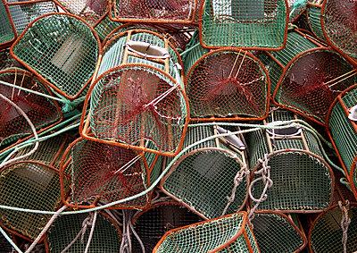 Reusen zum Fang von Schalentieren - p9791830 von Strazar