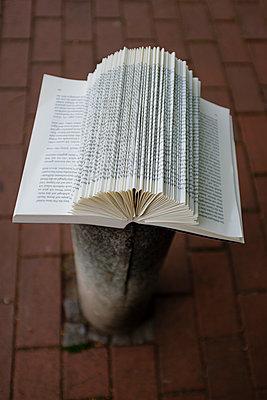 Aufgeschlagenes Buch - p1579m2193138 von Alexander Ziegler