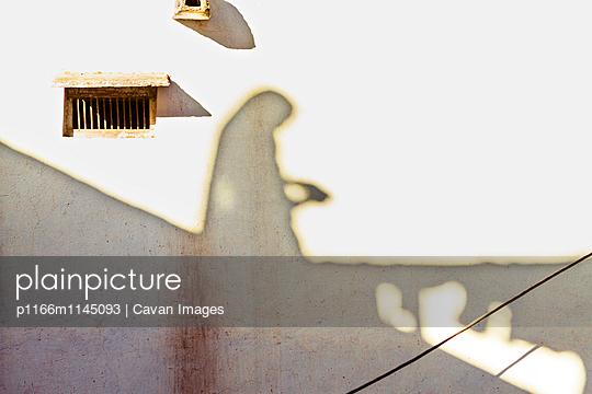 p1166m1145093 von Cavan Images