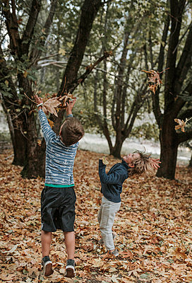 Playful brothers playing with leaves at Yosemite National Park during autumn - p1166m1543312 by Cavan Social