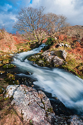 River in the foothills of Cnicht, Croesor Valley, Snowdonia National Park, Gwynedd, North Wales, Wales, United Kingdom, Europe - p871m2022861 by Matthew Williams-Ellis