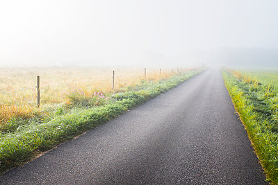 Country road in fog - p312m1063752f by Stefan Isaksson