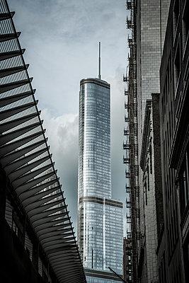 Skyscraper, Chicago - p1170m2145267 by Bjanka Kadic