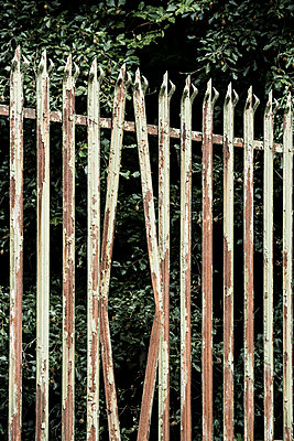 An old weathered worn and  rusty fence made of metal spikes, two of the posts are bent as if someone has tried to break in through the gap. - p1057m2020707 by Stephen Shepherd