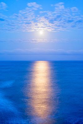 Meer, Kalifornien - p1436m1492996 von Joseph S. Giacalone