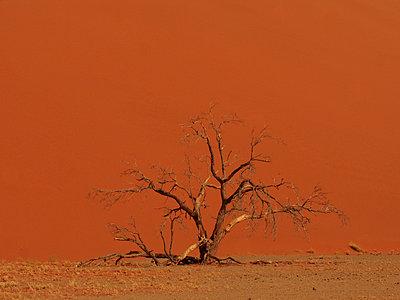 Namibia - p8870047 von Christian Kuhn