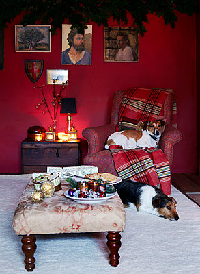 Two dogs sit at fireside in beamed country home - p349m790266 by Brent Darby