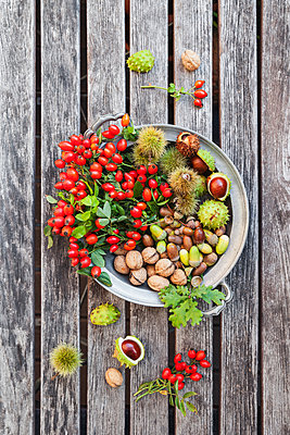 Tin plate of autumn harvest on wood - p300m1460117 by Gaby Wojciech