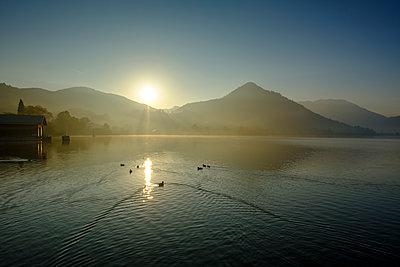 Germany, Upper Bavaria, Lake Schliersee, morning mood at spa park - p300m2070260 von Lisa und Wilfried Bahnmüller