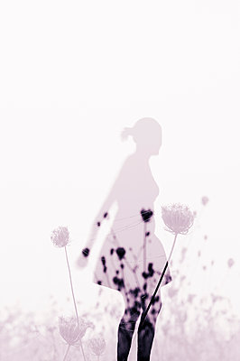 Silhouette of a woman in a meadow - p470m2053063 by Ingrid Michel