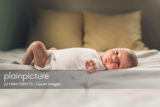 p1166m1555173 von Cavan Images