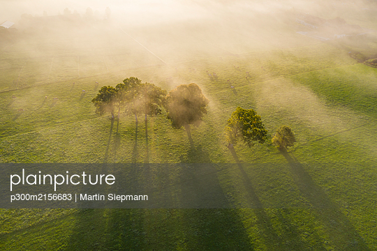 Germany, Upper Bavaria, Greiling, Aerial view of field and trees in fog at sunrise - p300m2156683 by Martin Siepmann