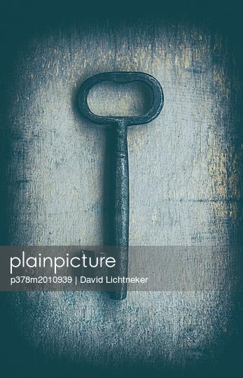 p378m2010939 von David Lichtneker