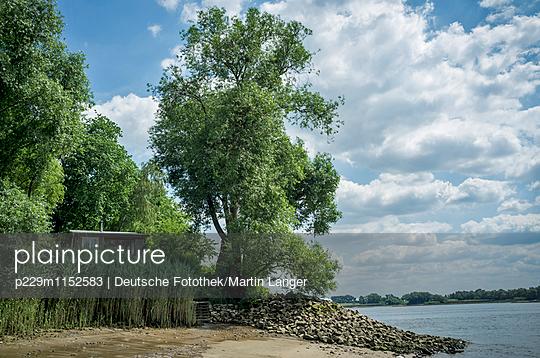 Elbufer - p229m1152583 von Martin Langer