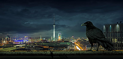 Crow overlooking cityscape, Berlin, Berlin, Germany - p555m1454198 by Chris Clor