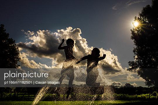 p1166m1182501 von Cavan Images