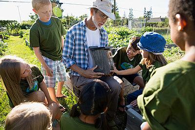 Expert gardener showing kids birdhouse in sunny garden - p1192m1052134f by Hero Images