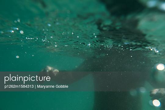 Underwater Shadow - p1262m1584313 by Maryanne Gobble