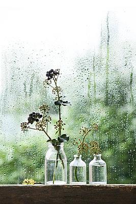 Regenwetter - p1348m1215657 von HANDKE + NEU