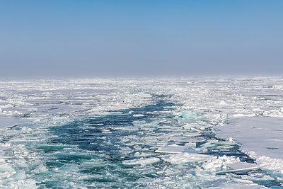 Broken ice floating in Arctic Ocean - p300m2214112 by Michael Runkel