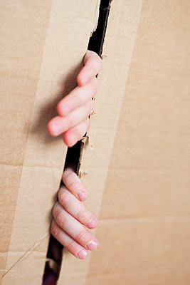 Girl playing hide-and-seek in a cardboard box - p699m2007787 by Sonja Speck