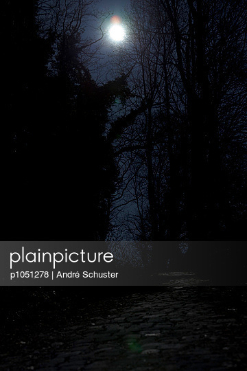 Nachts - p1051278 von André Schuster
