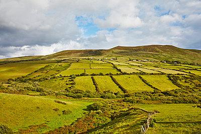 Felder in Irland - p1272m1460787 von Steffen Scheyhing