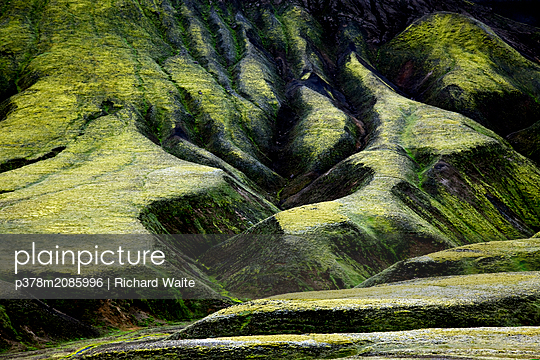 Moss on Volcanic Rocks,Iceland II - p378m2085996 by Richard Waite