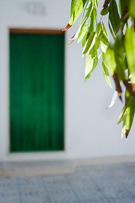 Green door - p951m853295 by Caterina Sansone