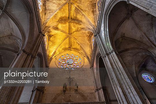 Domed structure, columns, cathedral, Santa María de la Sede, Sevilla, Spain - p1332m2203281 by Tamboly