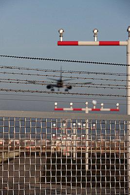 Aeroplane landing on airport - p300m660081f by Tom Hoenig