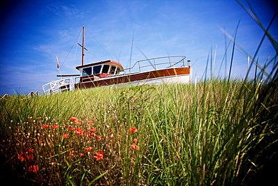 Boot auf der Wiese - p606m1564847 von Iris Friedrich
