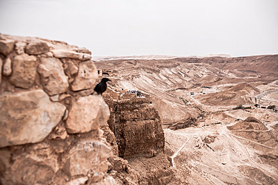 Ancient fortification Masada - p741m929362 by Christof Mattes