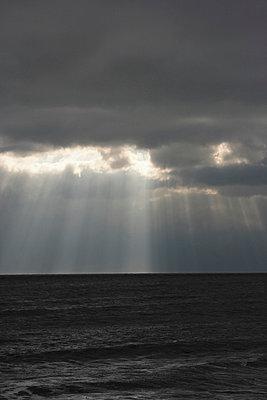 Sun ray - p1121m918511 von Gail Symes