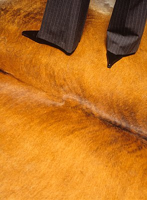 Cowskin and pinstripes - p1157m1093006 by Klaus Nather