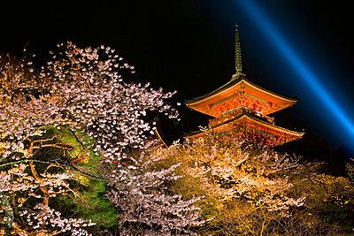 Kiyomizu-Dera temple - p6510542 by Gavin Hellier
