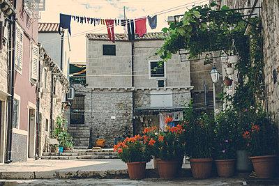 Backyard in Dubrovnik - p795m2187225 by JanJasperKlein