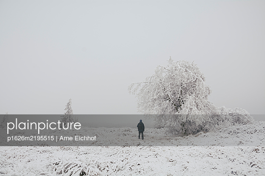 p1626m2195515 by Arne Eichhof