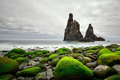 Portugal, Madeira, Rocky coast, Rock formations - p300m1052962f by Kontrastlicht